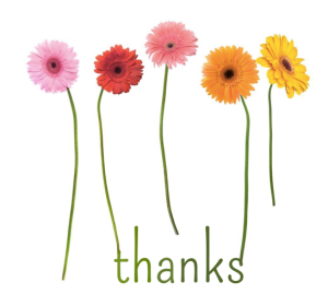 white background with 5 gerbera flowers pink, red, coral, orange and yellow with green stems, green text thanks coming out of the stem